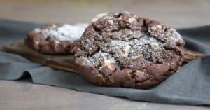 עוגיות אמסטרדם ראשית